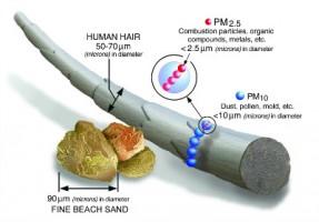 【转载】 查了多篇科学文献,给你一份PM2.5知识图谱